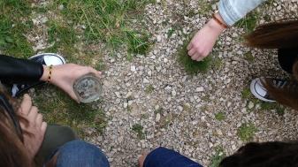 I ragazzi raccolgono i piccoli artropodi che incontriamo durante l'escursione